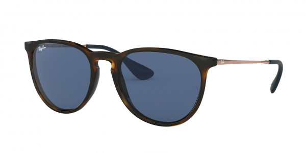 8a6a39a8d0fe1 Ray-Ban RB4171 ERIKA Sunglasses - Ray-Ban Authorized Retailer ...